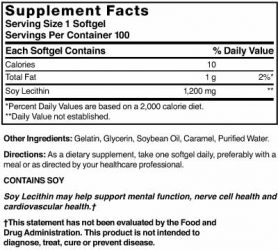 Soy Lecithin 19 gr (1200 mg)